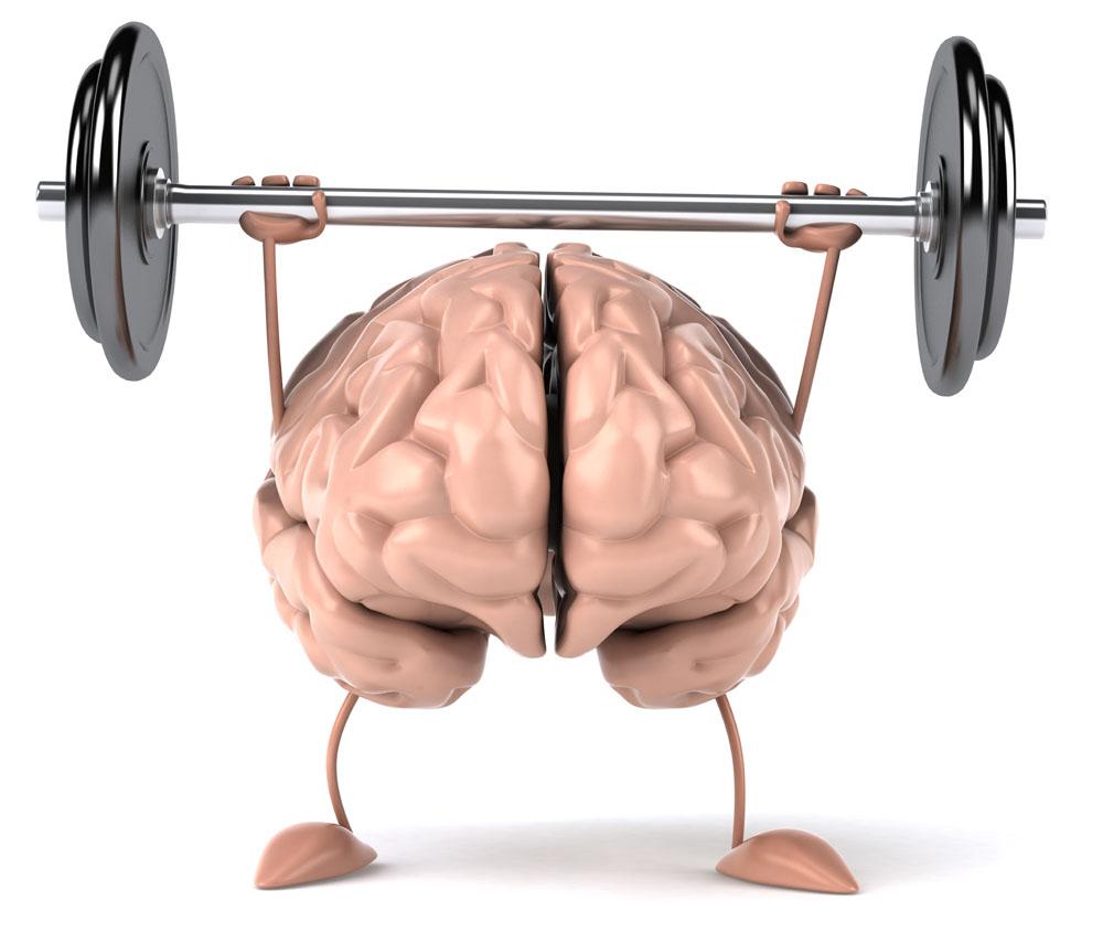 全脑速读方法 快速阅读提高记忆力训练软件思维导图